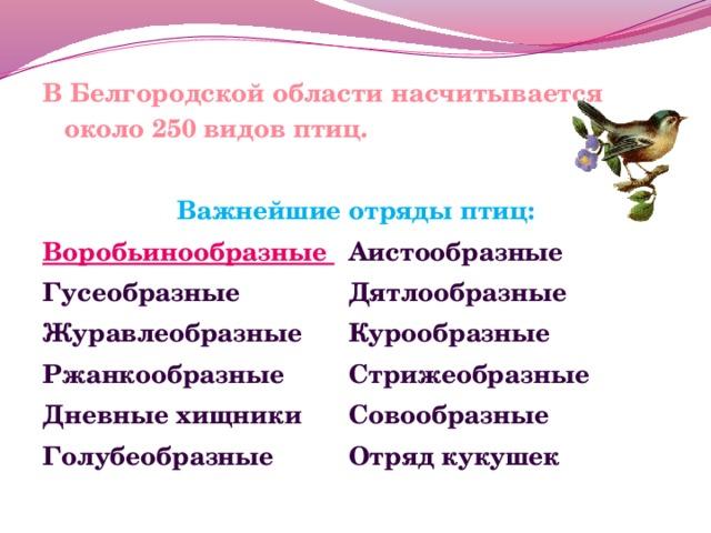В Белгородской области насчитывается около 250 видов птиц.  Важнейшие отряды птиц: Воробьинообразные  Аистообразные Гусеобразные    Дятлообразные Журавлеобразные   Курообразные Ржанкообразные   Стрижеобразные Дневные хищники   Совообразные Голубеобразные   Отряд кукушек