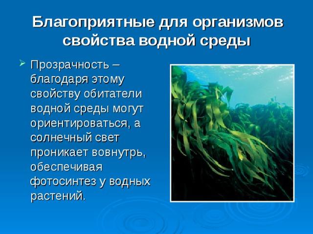 Благоприятные для организмов свойства водной среды Прозрачность – благодаря этому свойству обитатели водной среды могут ориентироваться, а солнечный свет проникает вовнутрь, обеспечивая фотосинтез у водных растений.