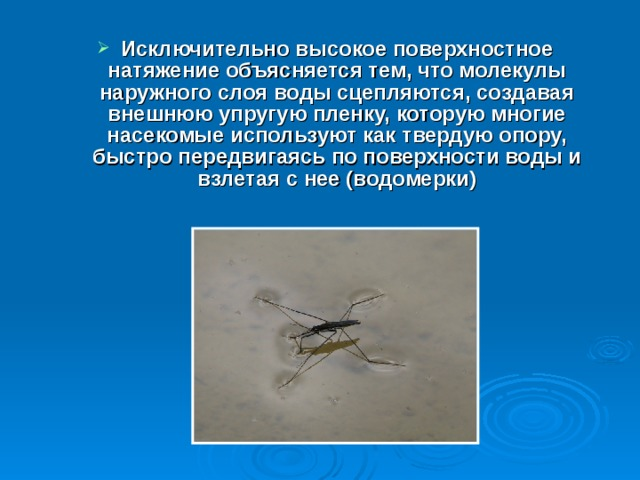 Исключительно высокое поверхностное натяжение объясняется тем, что молекулы наружного слоя воды сцепляются, создавая внешнюю упругую пленку, которую многие насекомые используют как твердую опору, быстро передвигаясь по поверхности воды и взлетая с нее (водомерки)