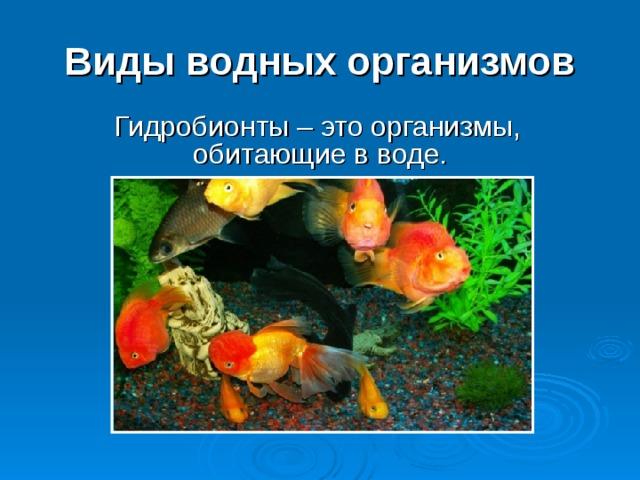 Виды водных организмов  Гидробионты – это организмы, обитающие в воде.