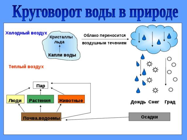 Холодный воздух Облако переносится Кристаллы  льда воздушным течением Капли воды Теплый воздух  Пар Животные Растения Люди Град Дождь Снег Осадки Почва.водоемы