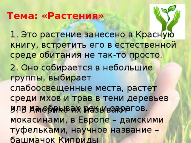 Тема: «Растения» 1. Это растение занесено в Красную книгу, встретить его в естественной среде обитания не так-то просто. 2. Оно собирается в небольшие группы, выбирает слабоосвещенные места, растет среди мхов и трав в тени деревьев или на обрывах рек и оврагов. 3. В Америке их называют мокасинами, в Европе – дамскими туфельками, научное название – башмачок Киприды
