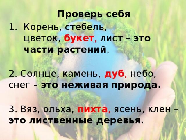 Проверь себя Корень, стебель, цветок, букет , лист – это части растений .  2. Солнце, камень,  дуб , небо, снег – это неживая природа.  3. Вяз, ольха, пихта , ясень, клен – это лиственные деревья.