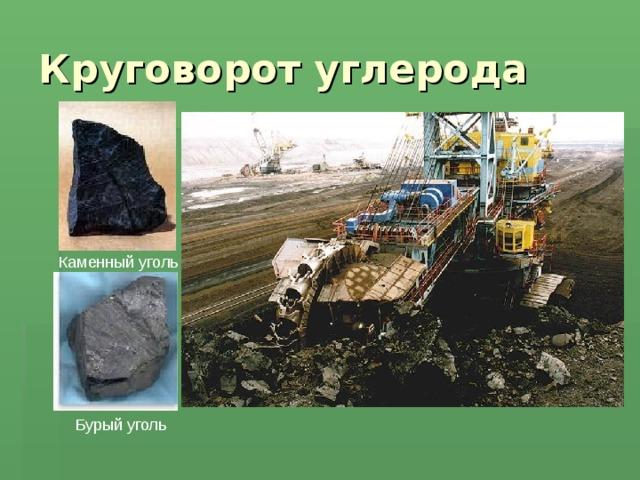 Круговорот углерода Каменный уголь Бурый уголь