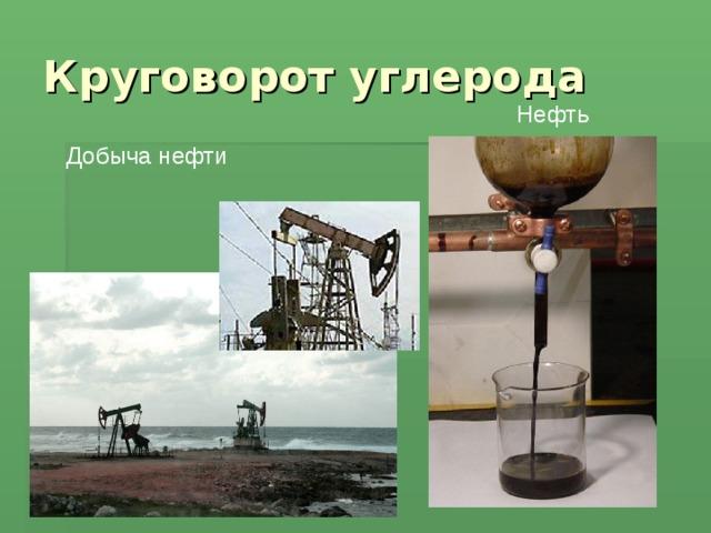 Круговорот углерода Нефть Добыча нефти