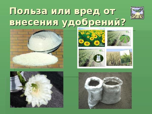 Польза или вред от внесения удобрений?