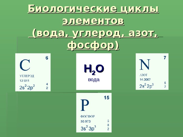 Биологические циклы элементов  (вода, углерод, азот, фосфор) H 2 O вода