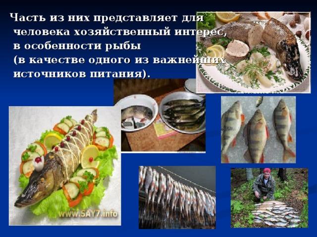 Часть из них представляет для  человека хозяйственный интерес,  в особенности рыбы  (в качестве одного из важнейших  источников питания).