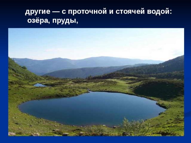 другие — с проточной и стоячей водой:  озёра, пруды,