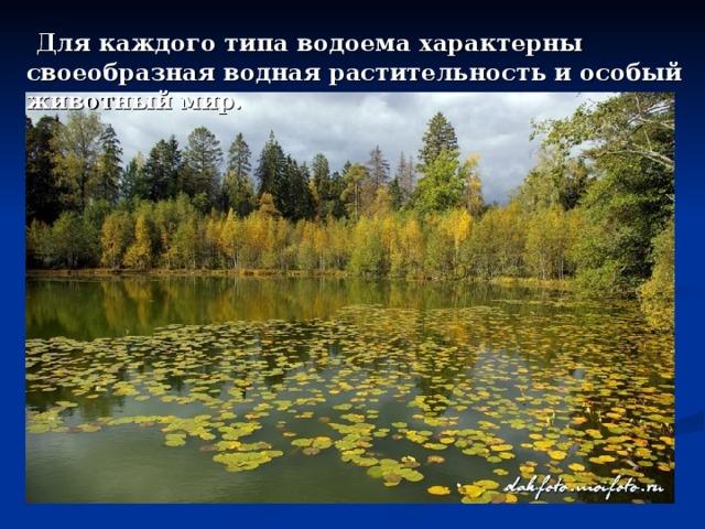 Для каждого типа водоема характерны своеобразная водная растительность и особый животный мир.