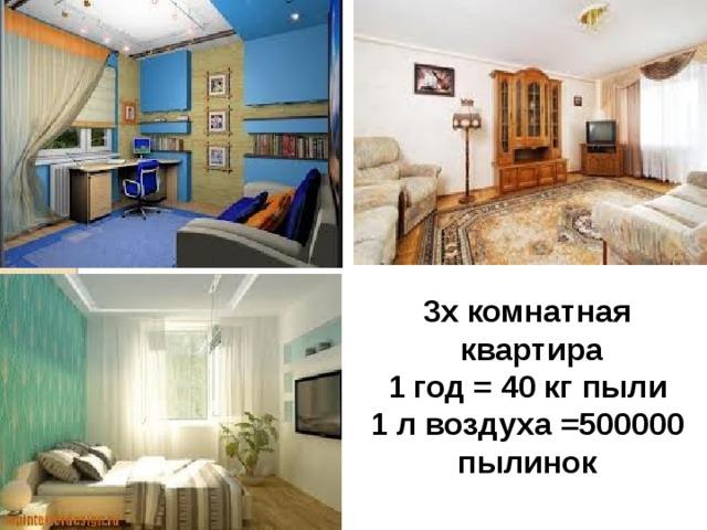 3х комнатная  квартира 1 год = 40 кг пыли 1 л воздуха =500000 пылинок