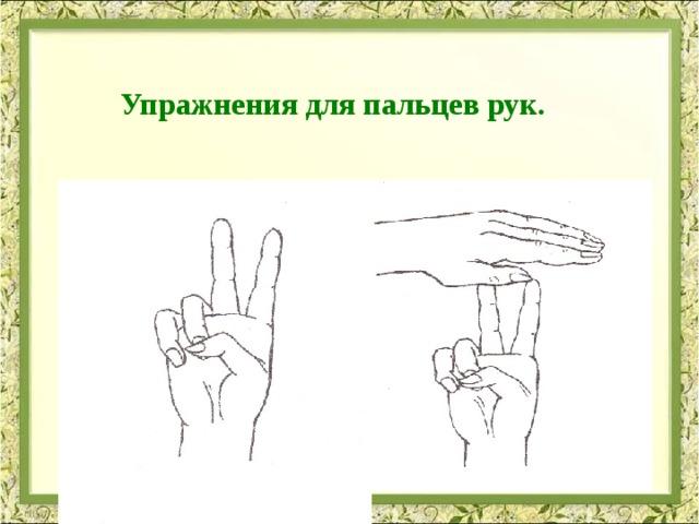 Упражнения для пальцев рук.