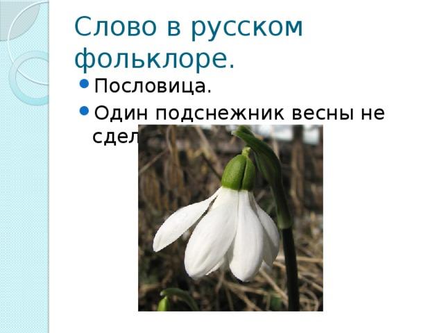 Слово в русском фольклоре.