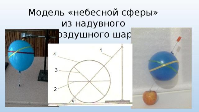 Модель «небесной сферы»  из надувного  воздушного шара