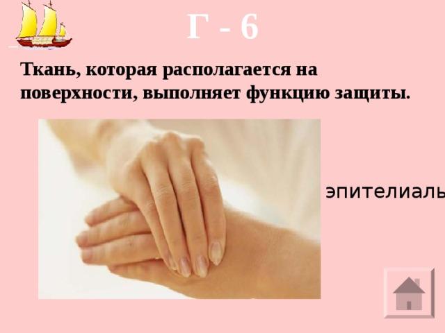Г - 6 Ткань, которая располагается на поверхности, выполняет функцию защиты. эпителиальная