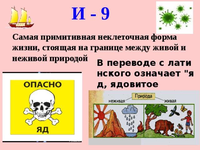 И - 9   Самая примитивная неклеточная форма жизни, стоящая на границе между живой и неживой природой Впереводеслатинскогоозначает
