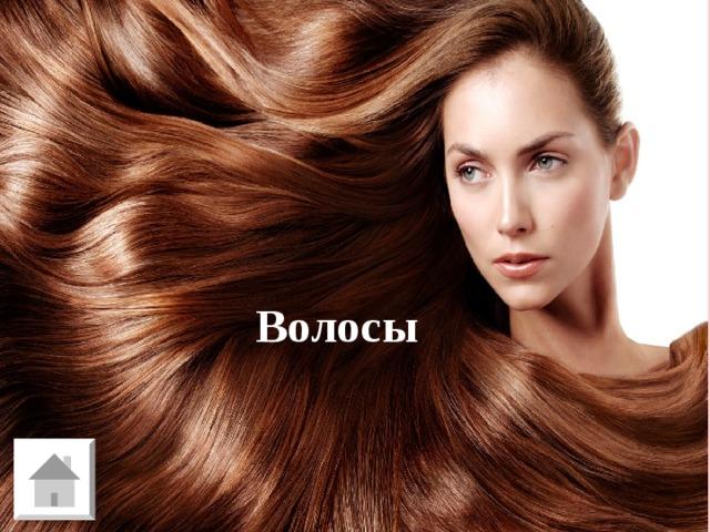 Д - 1 Часть тела, количество которой не знает ни один владелец Волосы