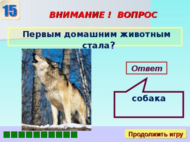 собака ВНИМАНИЕ ! ВОПРОС  Первым домашним животным стала ? Ответ Продолжить игру