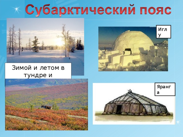 Иглу Зимой и летом в тундре и лесотундре Яранга