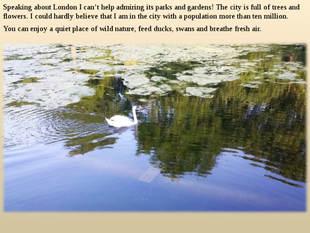 Speaking about London I can't help admiring its parks and gardens! The city is full of trees and flowers. I could hardly believe that I am in the city with a population more than ten million. You can enjoy a quiet place of wild nature, feed ducks, swans and breathe fresh air.