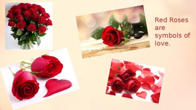 Red Roses are symbols of love.