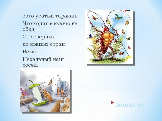 Зато усатый таракан, Что ходит в кухню на обед, От северных до южных стран Везде- Нахальный наш сосед.
