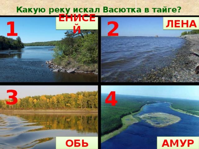 Какую реку искал Васютка в тайге? ЕНИСЕЙ ЛЕНА 1 2 3 4 АМУР ОБЬ ЕНИСЕЙ 1