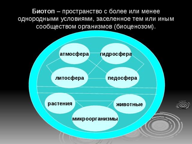 Биотоп – пространство с более или менее однородными условиями, заселенное тем или иным сообществом организмов (биоценозом). гидросфера атмосфера педосфера литосфера растения животные микроорганизмы