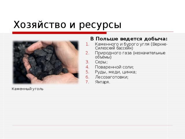 Хозяйство и ресурсы  В Польше ведется добыча: Каменного и бурого угля ( Верхне-Силезский бассейн) Природного газа (незначительные объёмы) Серы; Поваренной соли; Руды, меди, цинка; Лесозаготовки ; Янтаря. Каменный уголь