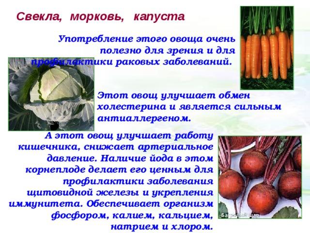 Свекла,  морковь, капуста Употребление этого овоща очень полезно для зрения и для профилактики раковых заболеваний.  Этот овощ улучшает обмен холестерина и является сильным антиаллергеном. А этот овощ улучшает работу кишечника, снижает артериальное давление. Наличие йода в этом корнеплоде делает его ценным для профилактики заболевания щитовидной железы и укрепления иммунитета. Обеспечивает организм фосфором, калием, кальцием, натрием и хлором.