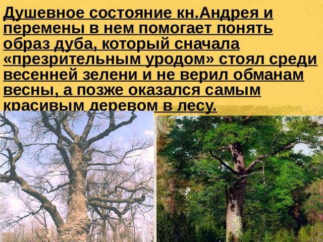 Душевное состояние кн.Андрея и перемены в нем помогает понять образ дуба, который сначала «презрительным уродом» стоял среди весенней зелени и не верил обманам весны, а позже оказался самым красивым деревом в лесу.