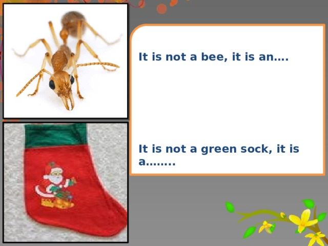 It is not a bee, it is an….       It is not a green sock, it is a……..