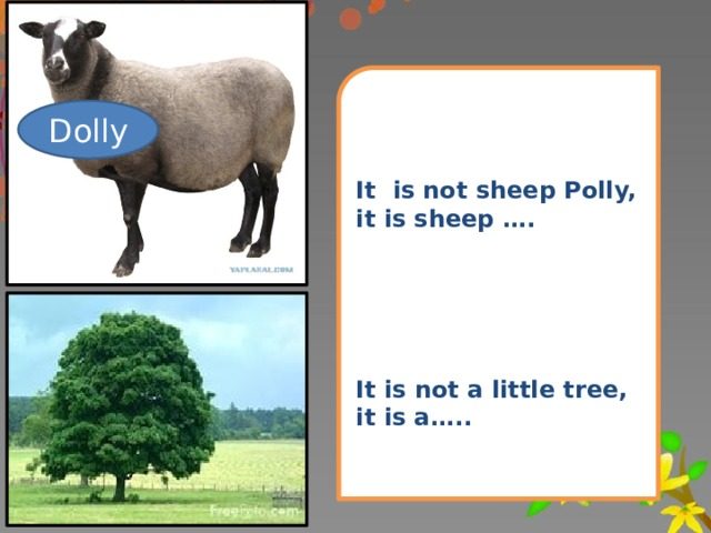 It is not sheep Polly, it is sheep …. It is not a little tree, it is a….. Dolly