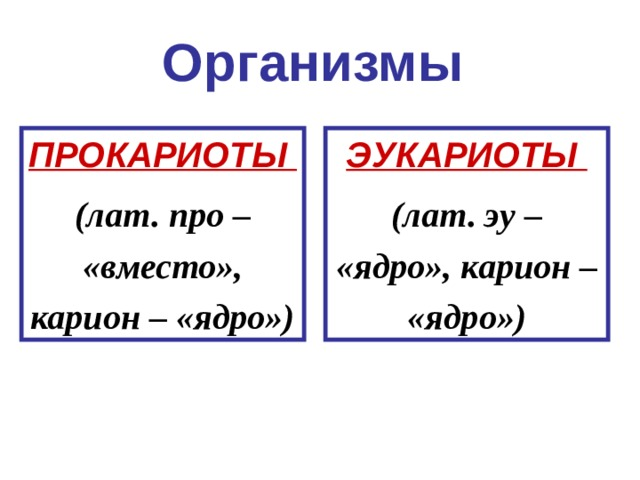 Организмы ПРОКАРИОТЫ (лат. про – «вместо», карион – «ядро») ЭУКАРИОТЫ (лат. эу – «ядро», карион – «ядро»)