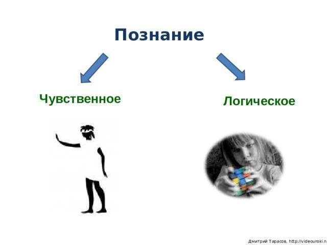 Познание Чувственное Логическое  Дмитрий Тарасов, http://videouroki.net