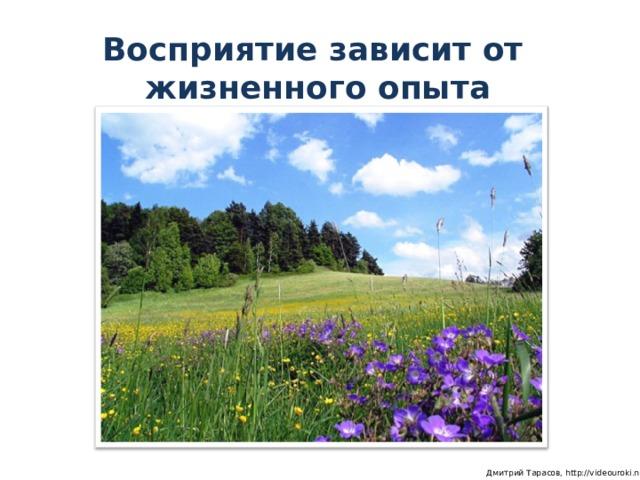 Восприятие зависит от  жизненного опыта  Дмитрий Тарасов, http://videouroki.net