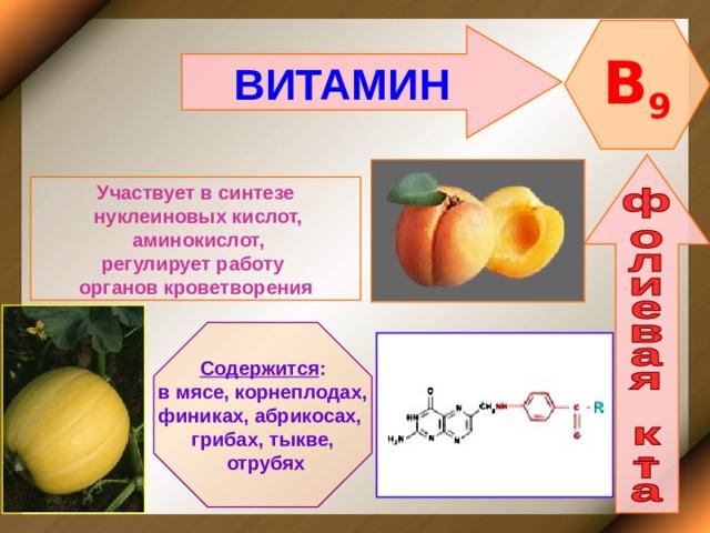 B 9 ВИТАМИН    Участвует в синтезе  нуклеиновых кислот,  аминокислот, регулирует работу органов кроветворения   Содержится : в мясе, корнеплодах, финиках, абрикосах, грибах, тыкве,  отрубях