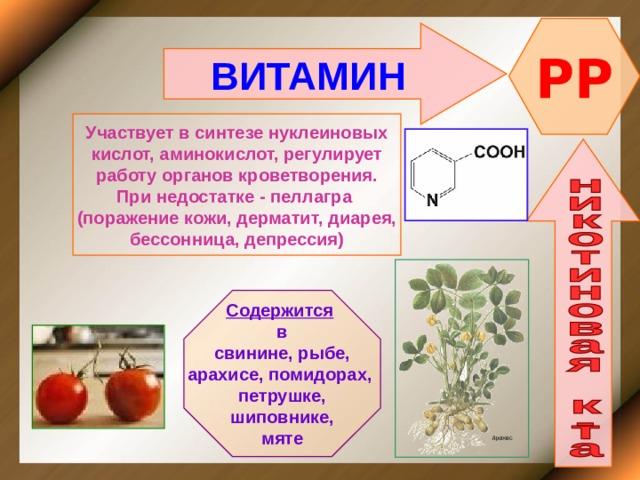 PP ВИТАМИН    Участвует в синтезе нуклеиновых кислот, аминокислот, регулирует работу органов кроветворения. При недостатке - пеллагра (поражение кожи, дерматит, диарея, бессонница, депрессия)    Содержится  в свинине, рыбе, арахисе, помидорах, петрушке, шиповнике, мяте