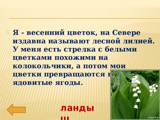 Я - весенний цветок, на Севере издавна называют лесной лилией. У меня есть стрелка с белыми цветками похожими на колокольчики, а потом мои цветки превращаются в красные ядовитые ягоды.