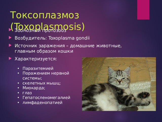 Токсоплазмоз (Toxoplasmosis)