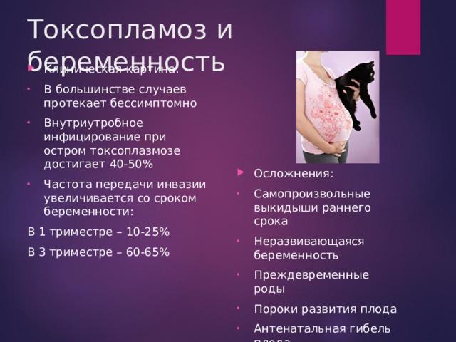 Токсопламоз и беременность Клиническая картина: В большинстве случаев протекает бессимптомно Внутриутробное инфицирование при остром токсоплазмозе достигает 40-50% Частота передачи инвазии увеличивается со сроком беременности: В 1 триместре – 10-25% В 3 триместре – 60-65%