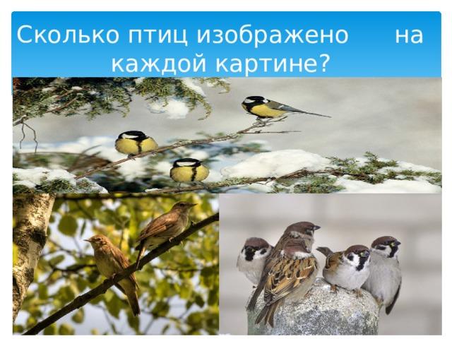 Сколько птиц изображено на каждой картине?