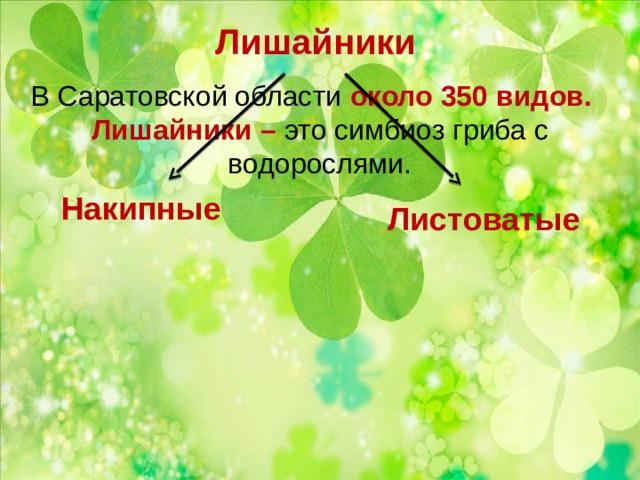 Лишайники В Саратовской области около 350 видов. Лишайники – это симбиоз гриба с водорослями. Накипные Листоватые