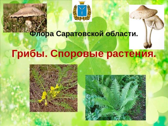 Флора Саратовской области.   Грибы. Споровые растения.