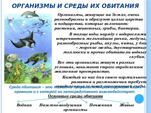 Организмы и среды их обитания     Организмы, живущие на Земле, очень разнообразны и образуют целые царства и подцарства, которые включают: растения, животных, грибы, бактерии. В толще воды наряду с водорослями встречаются мельчайшие рачки, медузы, разнообразные рыбы, акулы, киты, у дна – морские звезды, двустворчатые моллюски и прочие обитатели водных глубин.  Все эти организмы живут в разных условиях, занимают строго определенное жизненное пространство. Каждый из них для своего нормального развития и размножения требует определенных условий окружающей среды. Среда обитания – это та часть природы, которая окружает живой организм и с которой он непосредственно взаимодействует. Основные среды обитания  Водная Наземно-воздушная Почвенная Живые организмы