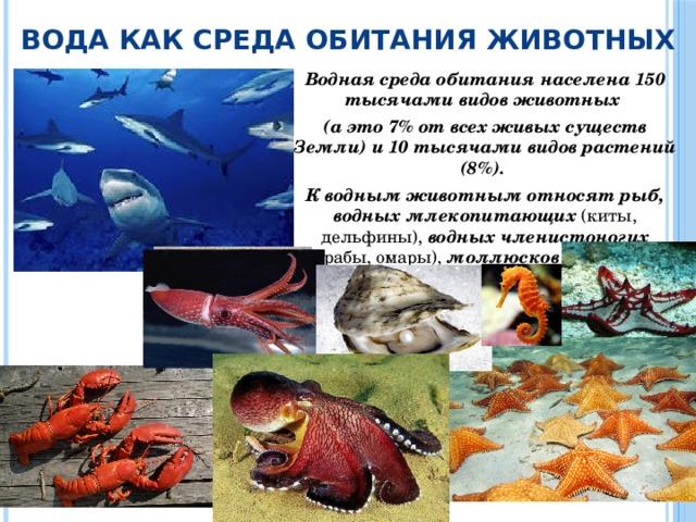 Вода как среда обитания животных Водная среда обитания населена 150 тысячами видов животных (а это 7% от всех живых существ Земли) и 10 тысячами видов растений (8%). К водным животным относят рыб, водных млекопитающих (киты, дельфины), водных членистоногих (крабы, омары), моллюсков (кальмары, осьминоги, жемчужницы) и т. д.