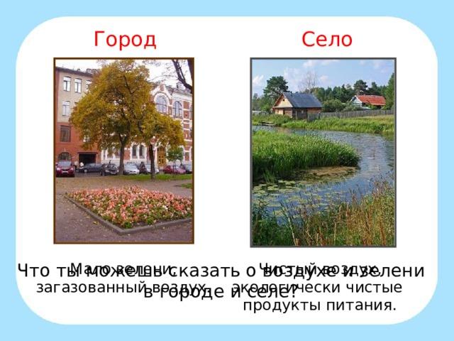Город Село Мало зелени, загазованный воздух. Чистый воздух, экологически чистые продукты питания. Что ты можешь сказать о воздухе и зелени в городе и селе?
