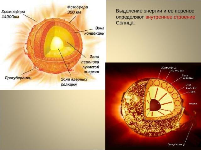 Выделение энергии и ее перенос определяют внутреннее строение Солнца: Каждая из этих зон занимает примерно 1/3 солнечного радиуса.