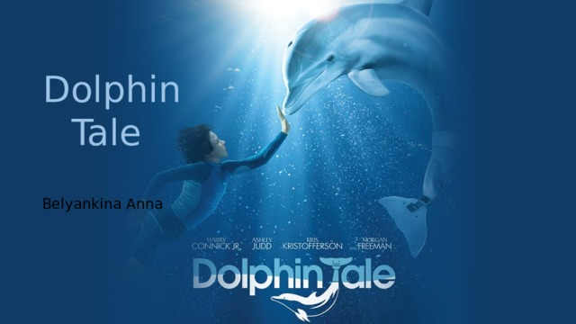Dolphin Tale Belyankina Anna