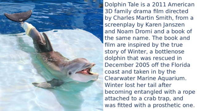 Dolphin Tale is a 2011 American 3D family drama film directed by Charles Martin Smith, from a screenplay by Karen Janszen and Noam Dromi and a book of the same name. The book and film are inspired by the true story of Winter, a bottlenose dolphin that was rescued in December 2005 off the Florida coast and taken in by the Clearwater Marine Aquarium. Winter lost her tail after becoming entangled with a rope attached to a crab trap, and was fitted with a prosthetic one.